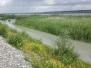 Wanderung - Lagunenweg an der Rheinmündung